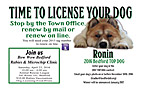 BEDFORD_DOG_LICENSING - Front